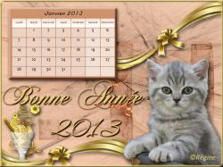 Calendrier Chats - Janvier 2013