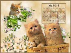 05-mai-2012-1.jpg