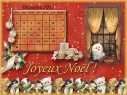 12-decembre-2012.jpg