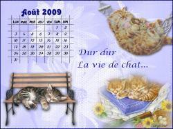 calendrier-aout-2009.jpg