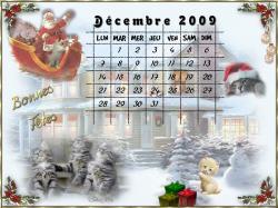 calendrier-decembre-2009.jpg