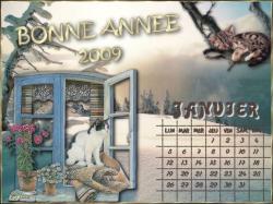 calendrier-janvier-2009.jpg