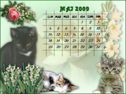calendrier-mai-2009-1.jpg
