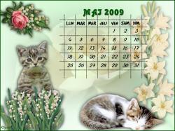 calendrier-mai-2009-2.jpg