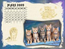 calendrier-mars-2009.jpg