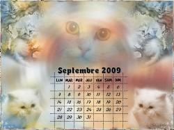 calendrier-septembre-2009.jpg