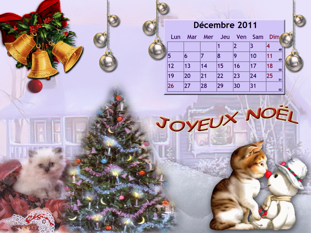 Calendrier Chat fond d'écran - Décembre 2011