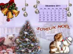 decembre-2011-1.jpg