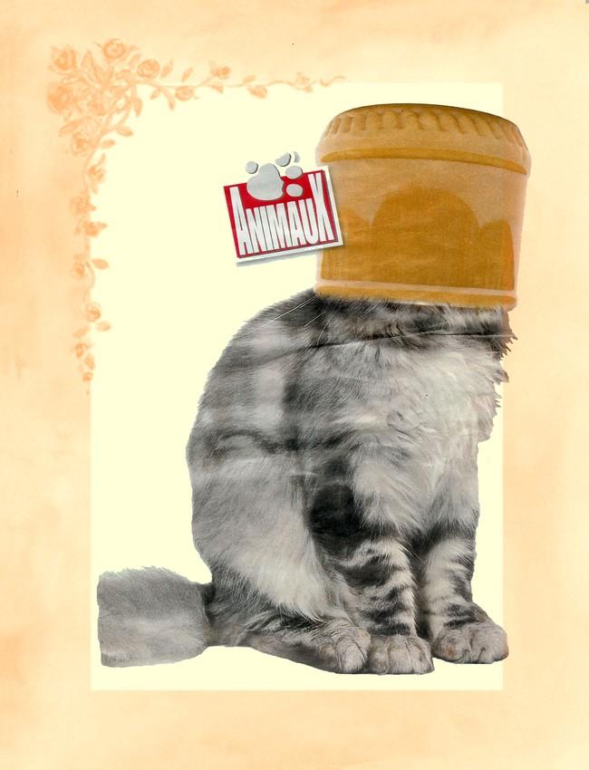 le-chat-sans-tete2.jpg