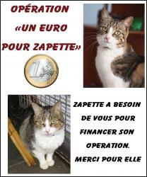 un-euro-pour-zapette-1.jpg