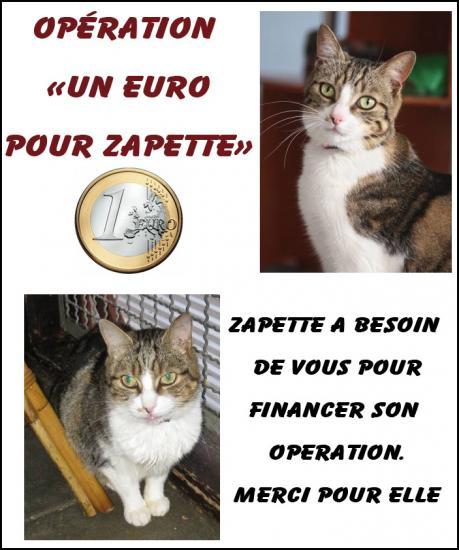 un-euro-pour-zapette-2.jpg
